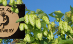 Beer Dinner: Rock Art Brewery and The Perfect Pear &#8211; June 30th (Vermont)