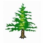 Beer Release – Twisted Pine's La Petite Saison Returns